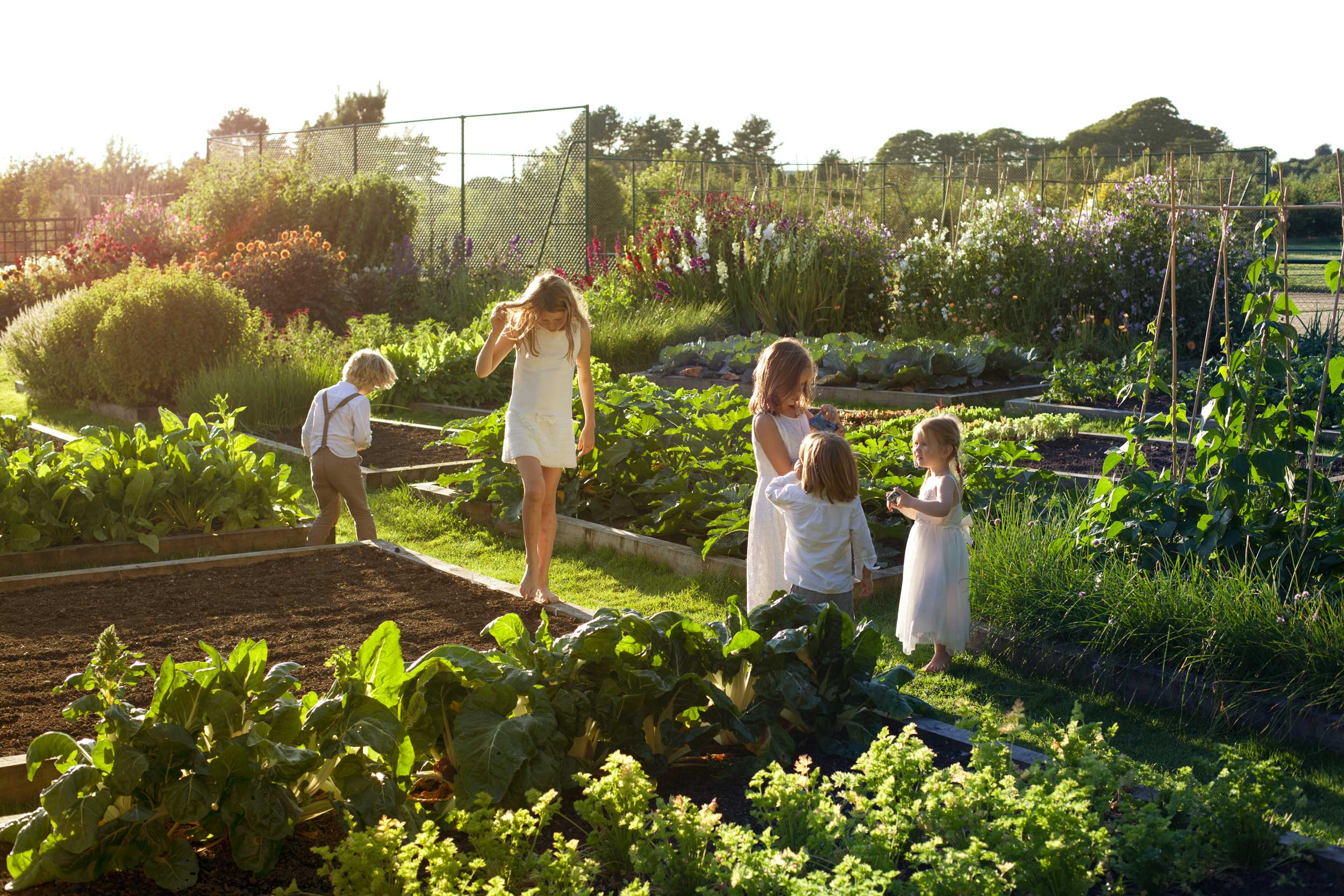 PERSONAL-KIDS-IN-ALLOTMENT